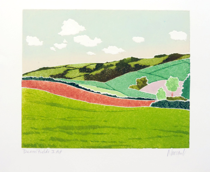 Print of Devon Fields I Red