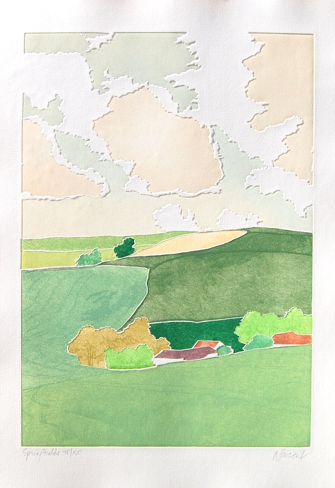Print of Spring Fields