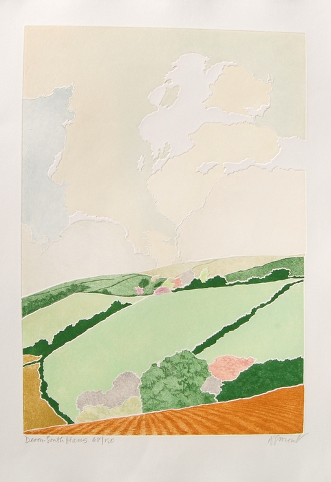 Print of Devon South Hams