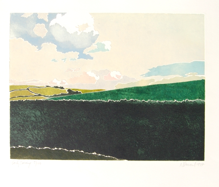 Print of Early Evening